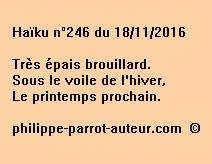 Haïku n°246 du 181116