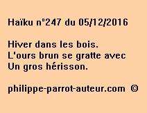 Haïku n°247 du 051216