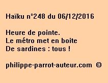 Haïku n°248 du 061216