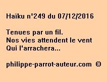 Haïku n°249 du 071216