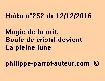 Haïku n°252 du 121216