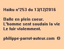 Haïku n°253 du 131216
