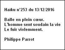 Haïku n°253 du 13/12/2016