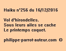 Haïku n°256 du 161216