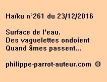 Haïku n°261 du 231216