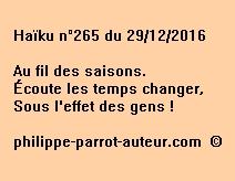 Haïku n°265 du 291216