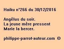 Haïku n°266 du 301216