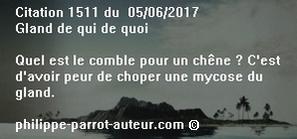 Cit 1511 050617