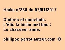 Haïku n°268 du 030117