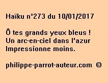 Haïku n°273 du 100117