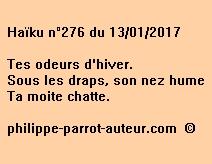 Haïku n°276 du 130117