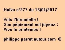 Haïku n°277 du 160117
