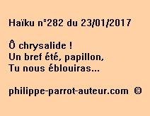 Haïku n°282 du 230117