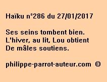 Haïku n°286 du 270117