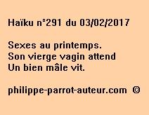 Haïku n°291 du 030217