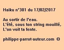 Haïku n°301 du 170217