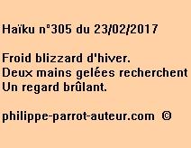 Haïku n°305 du 230217