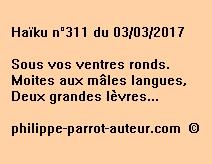 Haïku n°311 du 030317