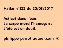 Haïku n°322 du 200317