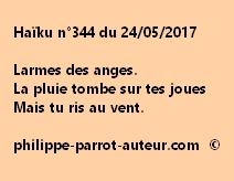 Haïku n°344 du 240517
