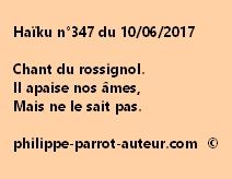 Haïku n°347 du 100617