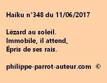 Haïku n°348 du 110617