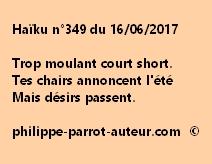 Haïku n°349 du 160617