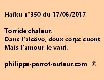 Haïku n°350 du 170617