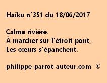 Haïku n°351 du 180617