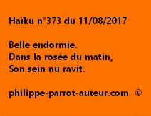 Haïku n°373 du 110817