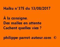 Haïku n°375 du 130817
