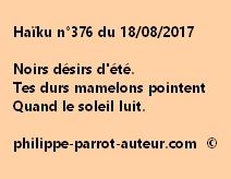 Haïku n°376 du 180817