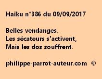 Haïku n°386 du 090917
