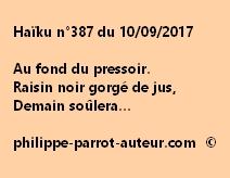 Haïku n°387 du 100917