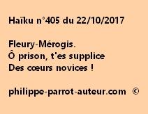 Haïku n°405 du 221017