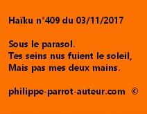 Haïku n°409 du 031117