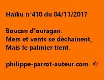 Haïku n°410 du 041117