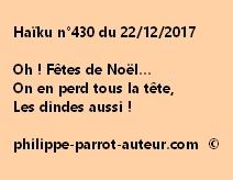 Haïku n°430 221217