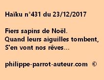 Haïku n°431 231217 fvw