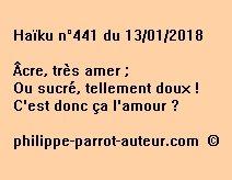Haïku n°441 130118
