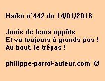 Haïku n°442 140118