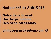Haïku n°445  210118