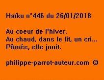Haïku n°446  260118