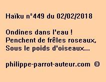 Haïku n°449  020218