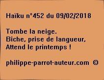 Haïku n°452  090218