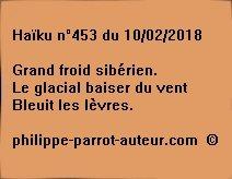 Haïku n°453  100218