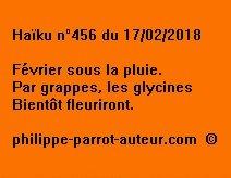 Haïku n°456  170218