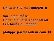 Haïku n°457  180218