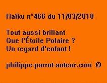 Haïku n°466 110318