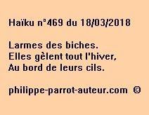 Haïku n°469  180318